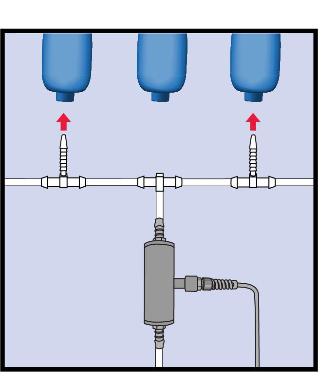 bottle rinsing